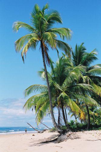 Praia Saquaíra