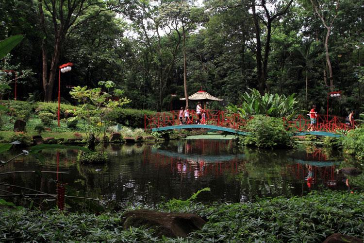 imagens jardim japones:Jardim Japonês está localizado dentro do Bosque Municipal. Possui