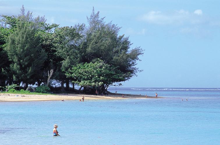 Hawaii Tourism Japan (HTJ)