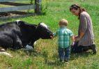 Fazendas do estado de NY permitem que visitantes tenham maior contato com os animais