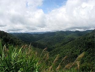 A �rea de Prote��o Nam Ha, no Laos, se estende por 222.300 hectares