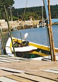 Rio Camboriú no Balneário Camboriú em Santa Catarina é um dos mais limpos rios do país, mas ainda está na classificação  regular