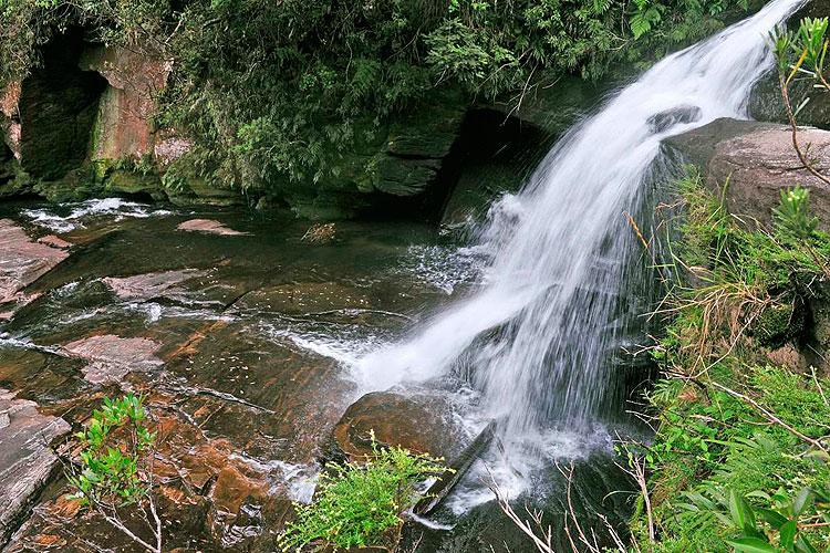 Ribeirão do Papagaio