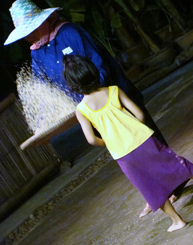 Peneira de arroz