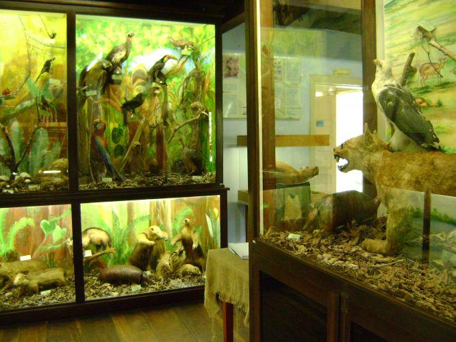 Museu de Ecologia