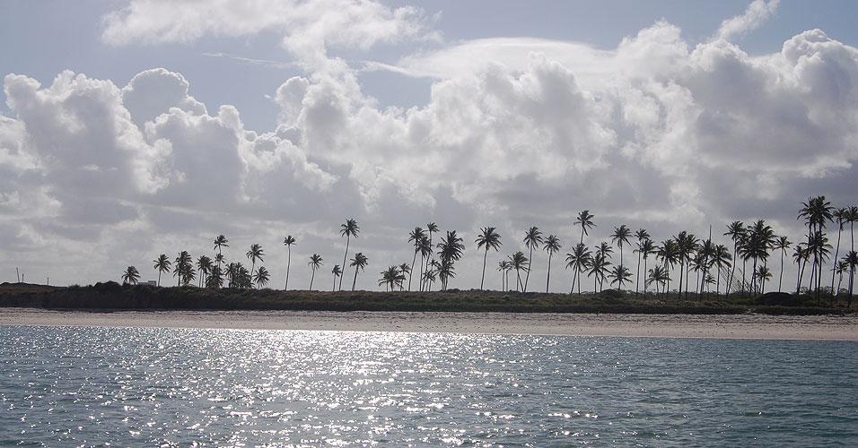 Ilha da Cocaia