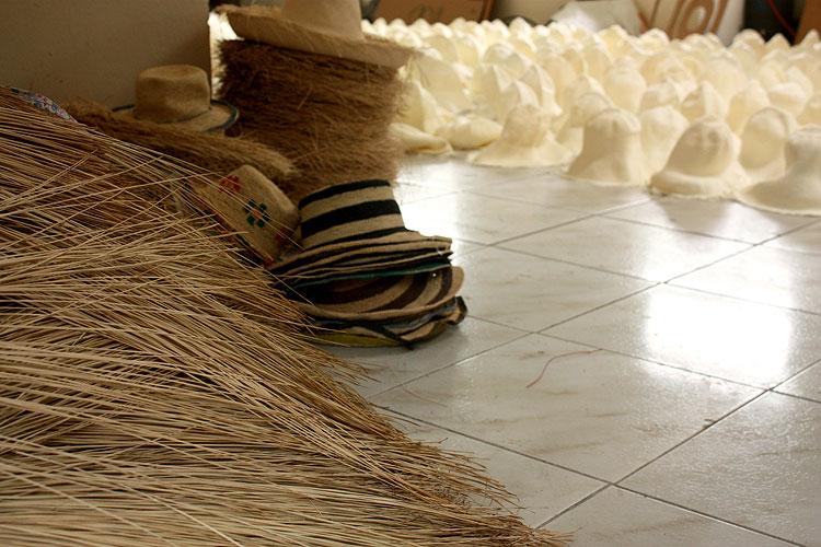 Chapéus Panamá