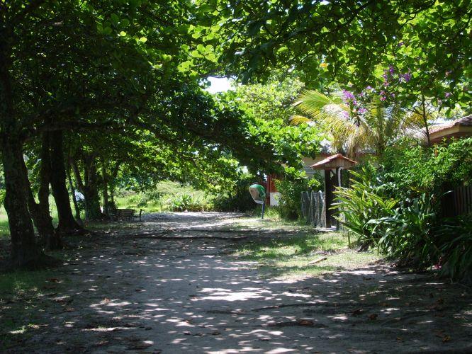 Sombra na trilha
