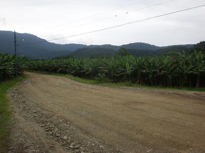 Estrada do Pico