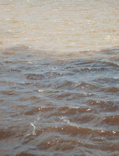 As águas dos rios Negro e Solimões