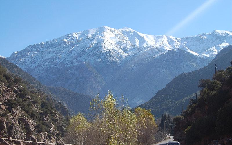 Monte Atlas