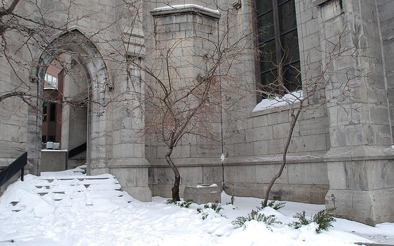 Universidade McGill