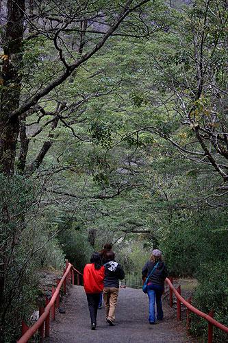 Parque Nacional Pérez Rosales