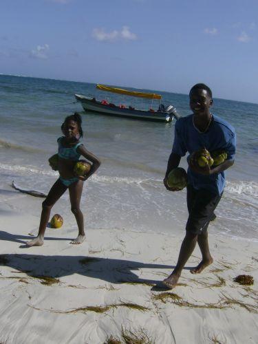 Crianças recolhem cocos