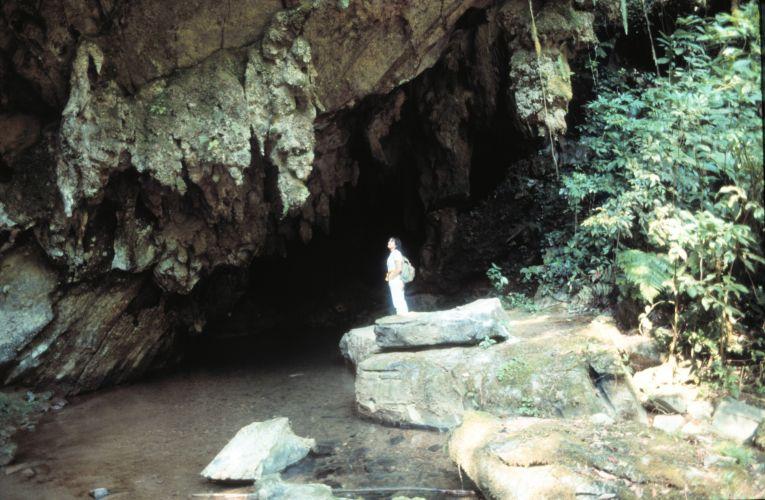 Parque Estadual Turístico do Alto Ribeira