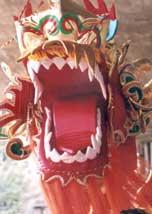 O Dragão Chinês,símbolo do Ano Novo