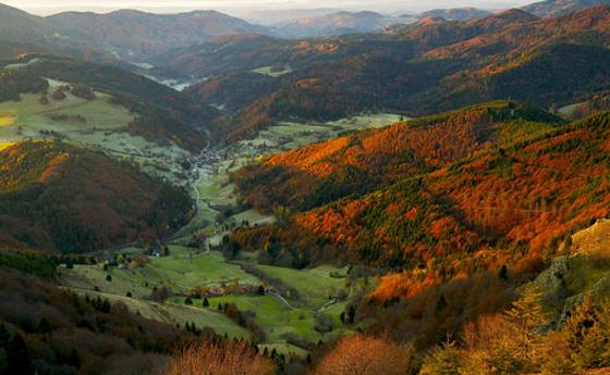 © Erich Spiegelhalter/Black Forest Tourism Board