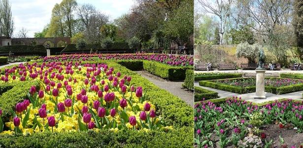 Canteiro de tulipas e prímulas em Holland Park, em Londres
