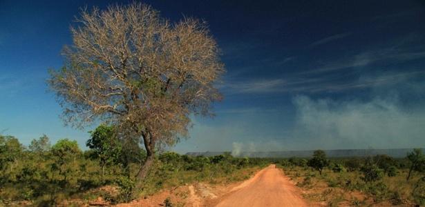 Localizado no Tocantins, no norte do Brasil, o Jalapão é uma das experiências turísticas mais selvagens em solos brasileiros